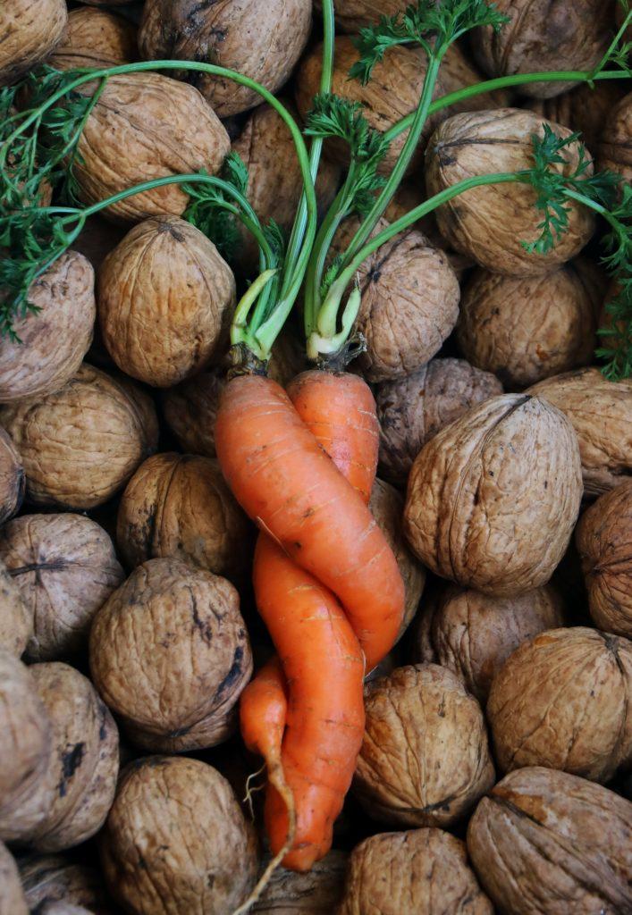 Моркв'яні обійми O.V. Homoniuk _№7