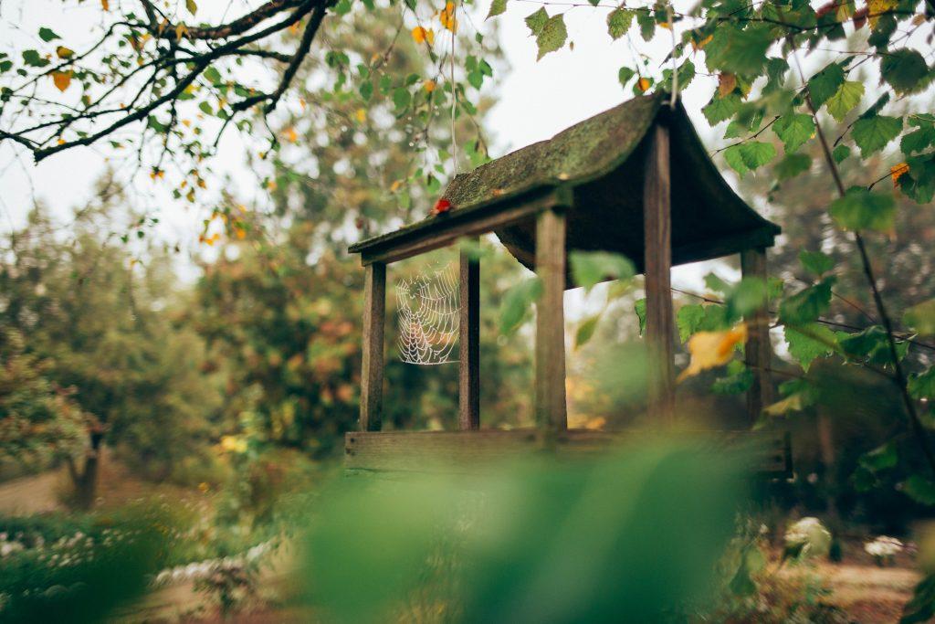 Екологічна чиста- Херсонська область