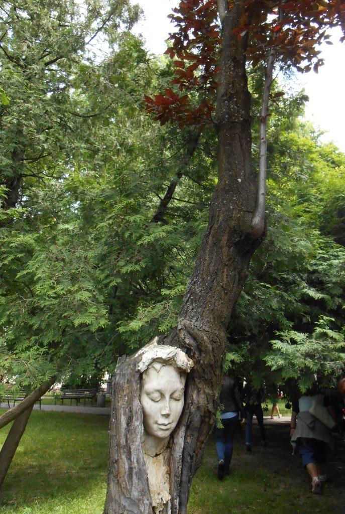 А за деревом дерево…