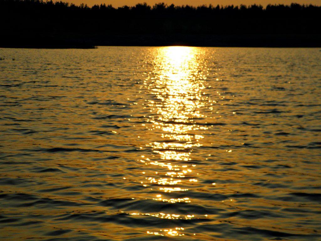 Чисте озеро. Сєвєродонецьк.