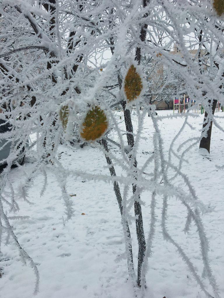 Зимова творчість