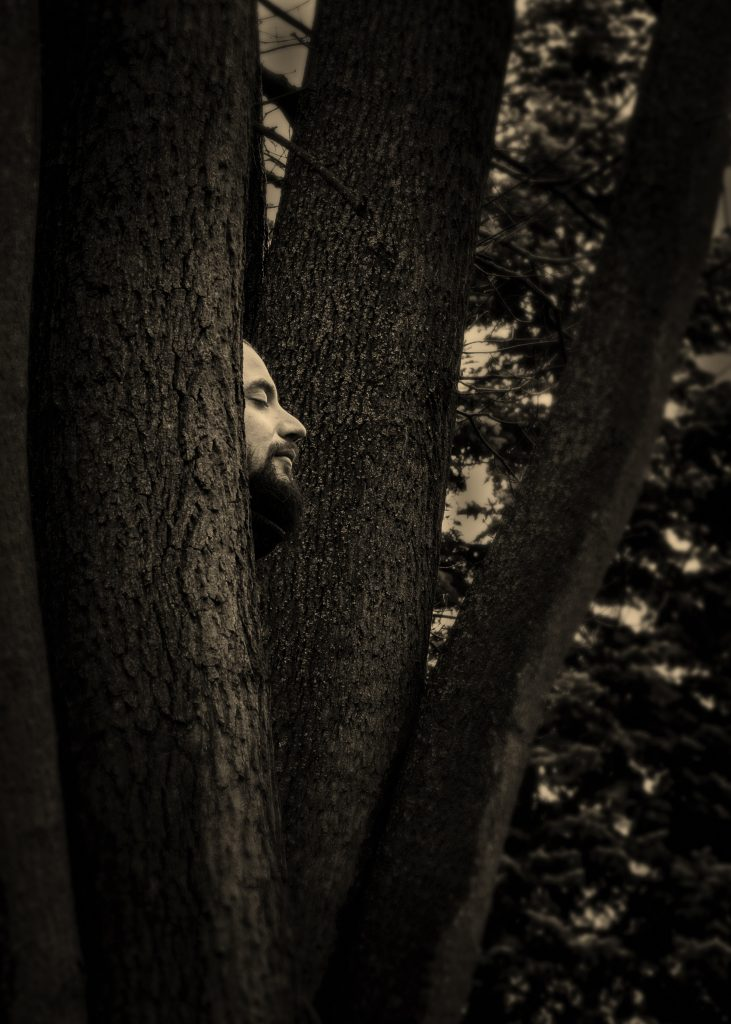 Ліс має обличчя